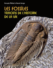 Les fossiles -